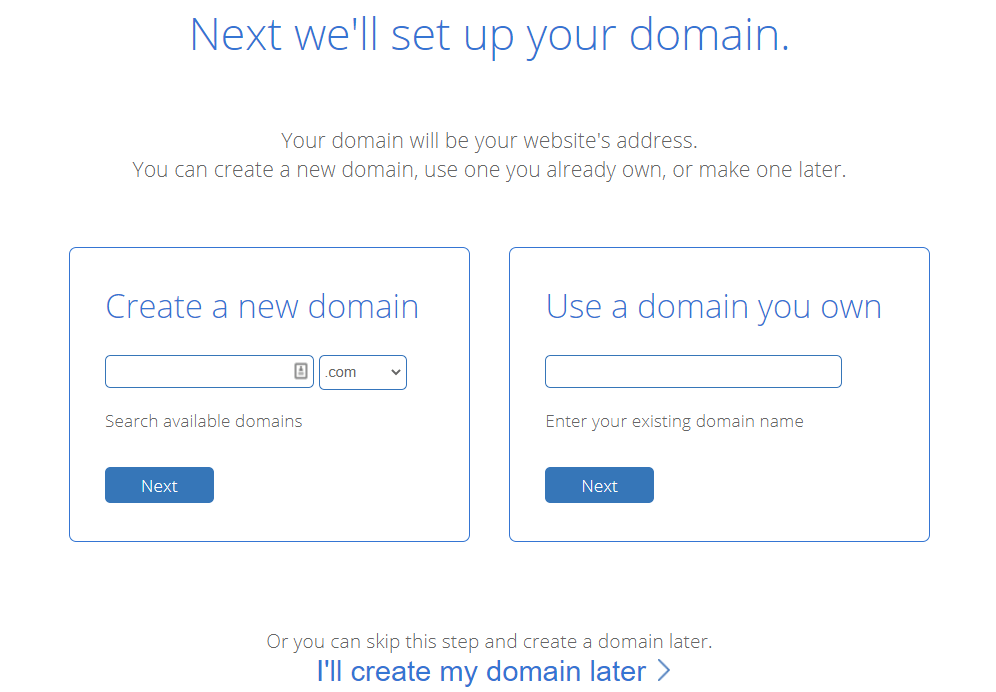 Enter your domain name or skip this process