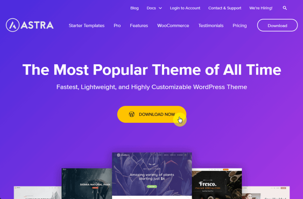 Download the themes files of the Astra theme